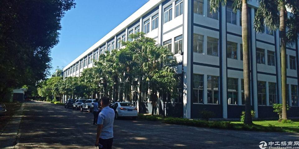 独门独院花园式厂房超豪华装修办公室
