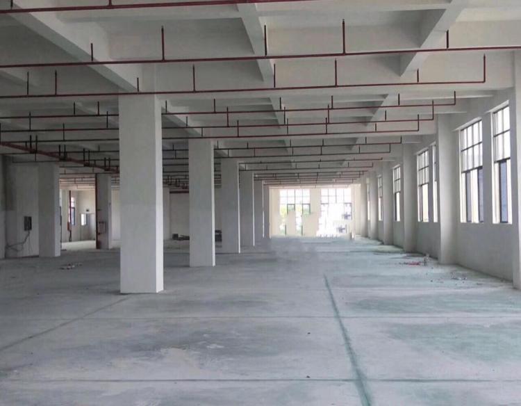 东莞万江环城路第一排9成新滴水15米钢构厂房急售占地15亩