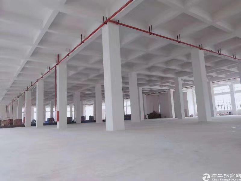 广州黄埔占地40.5亩国有证厂房出售.已做好三通一平-图3