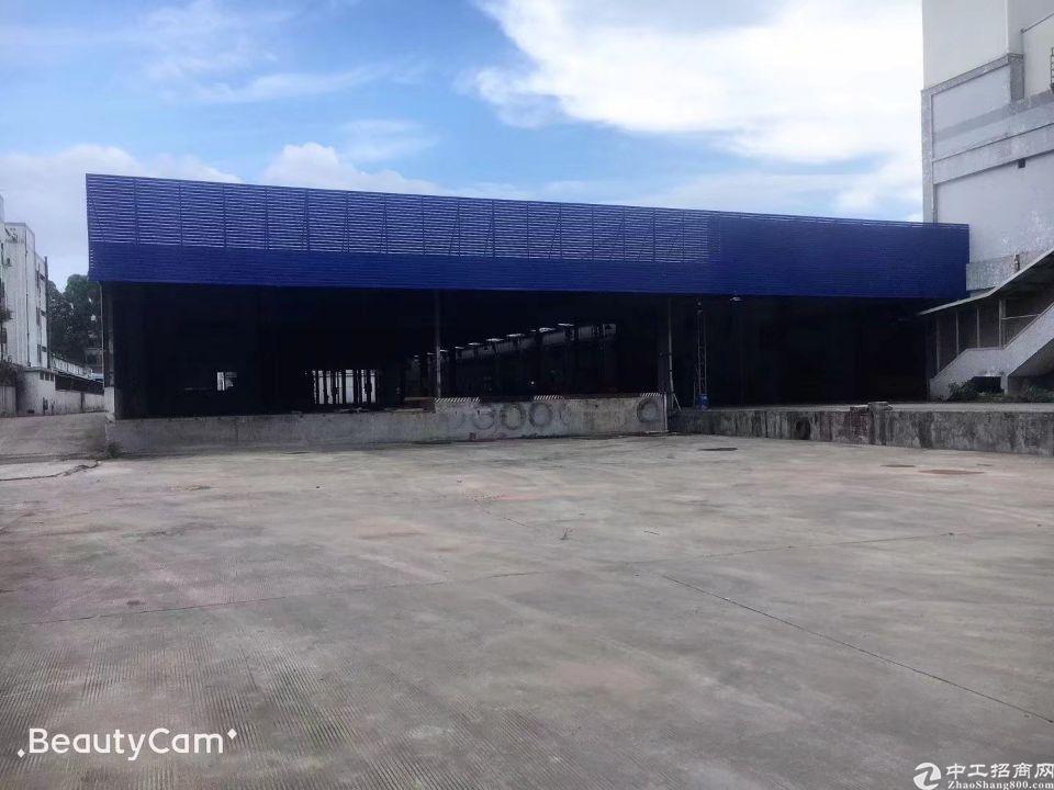 塘厦东深二线物流园出租7800平方物流仓库