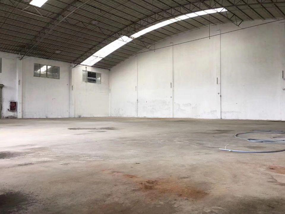 新光快速旁独院钢构厂房1300平米,滴水7米
