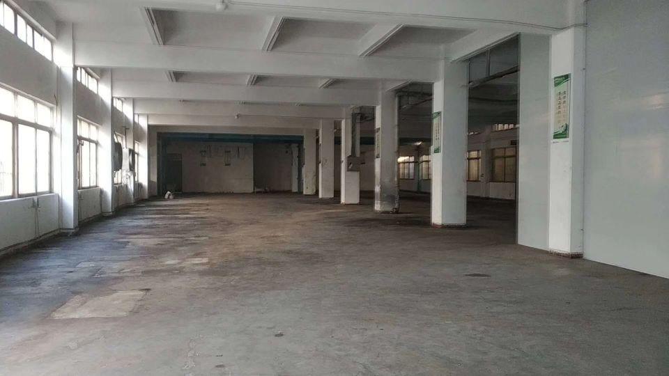 新出东坑镇总面积1600,单一层厂房750方,钢构两层仓库7