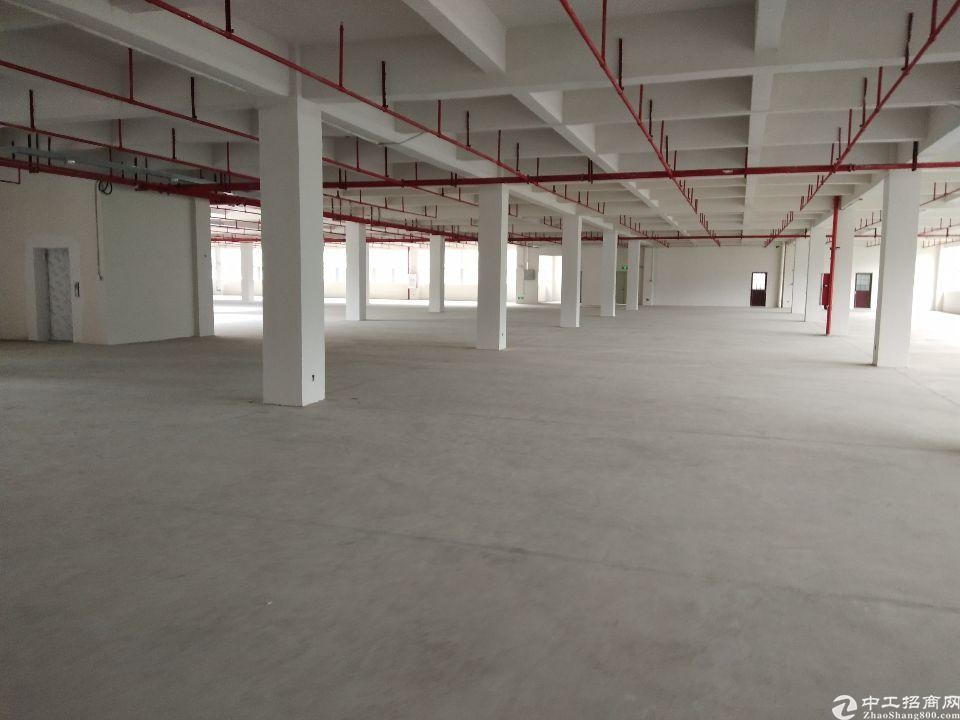 永和新出标准厂房8000平,可办环评,可分租,原房东