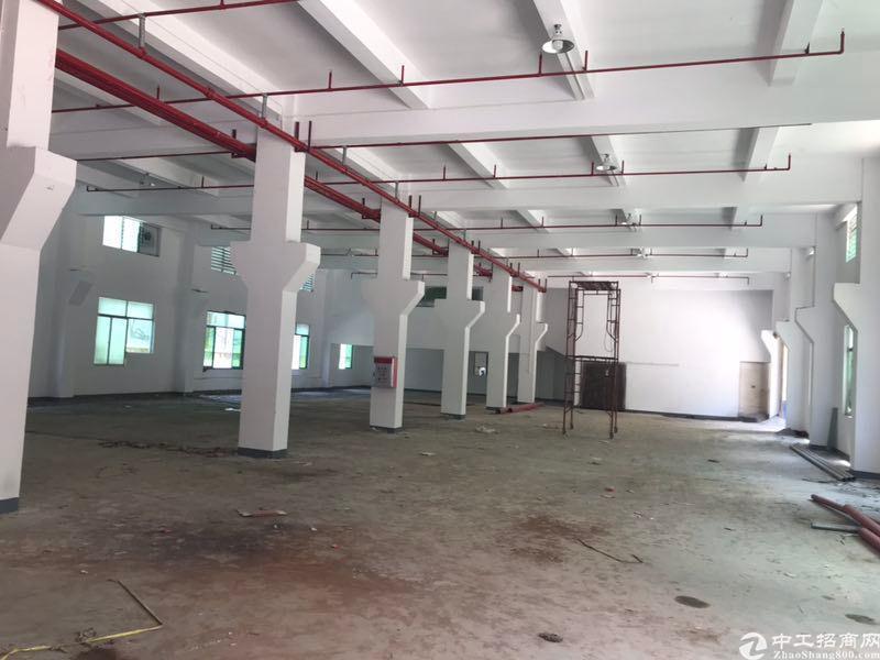 桥头镇新出标准厂房一楼分租。