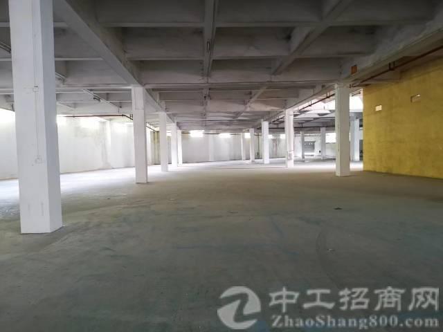 厚街镇7米高一楼7000平出租报价30元适合生产和物流仓库
