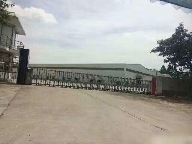 黄埔区国有双证厂房占地60亩.可转商业.单一层滴水10米