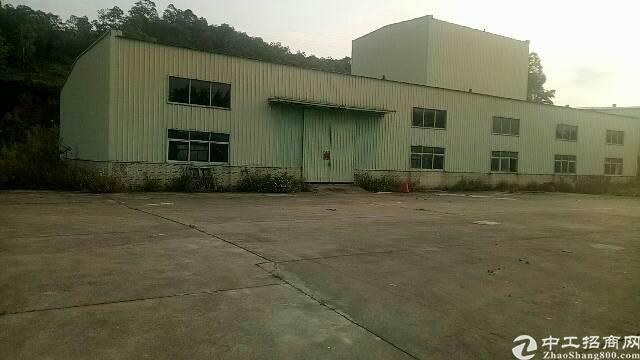 新出独院钢构厂房1000平方滴水8米低价招租