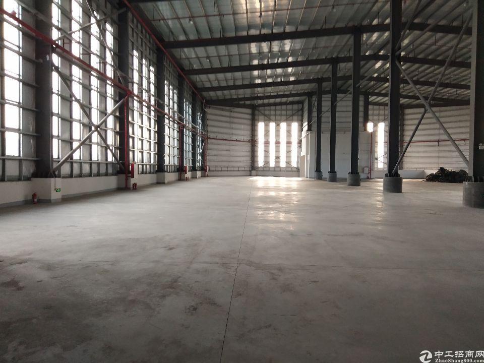 从化4000平单一层钢构,可办环评,可分租,原房东,滴水12