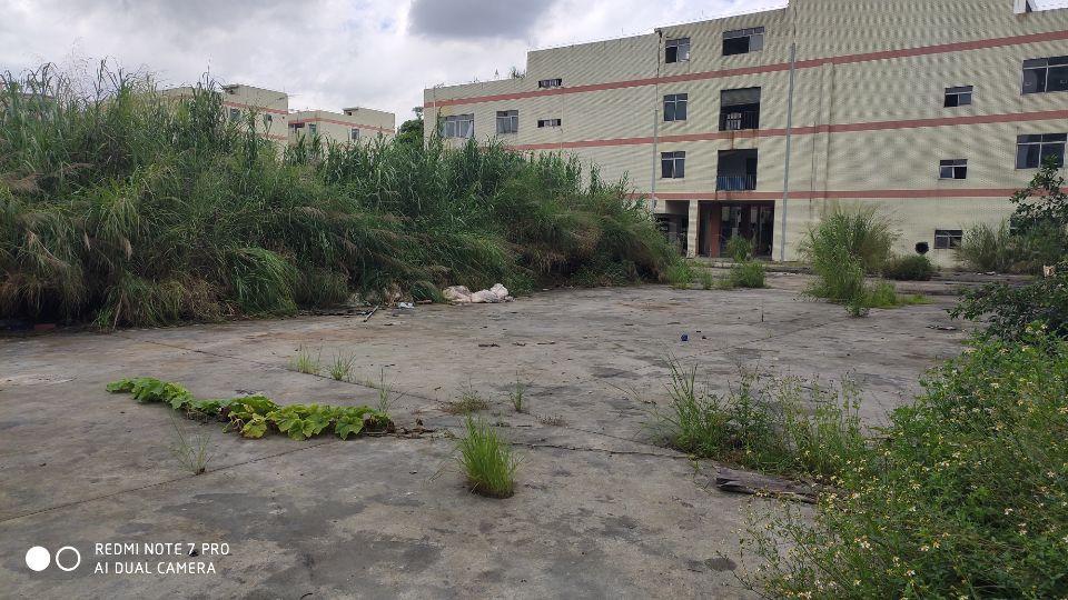 可以做学校的厂房共37000平方原房东出租