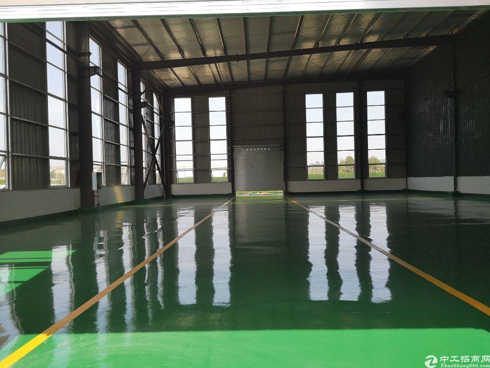 蒲江950平标准厂房出售,最后一套现房,50年产权-图4