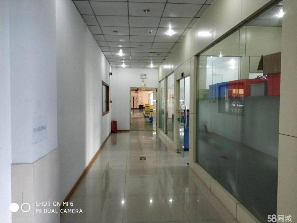 龙岗爱联地铁站旁独院厂房出租3000平有装修地坪漆大小可分租-图2