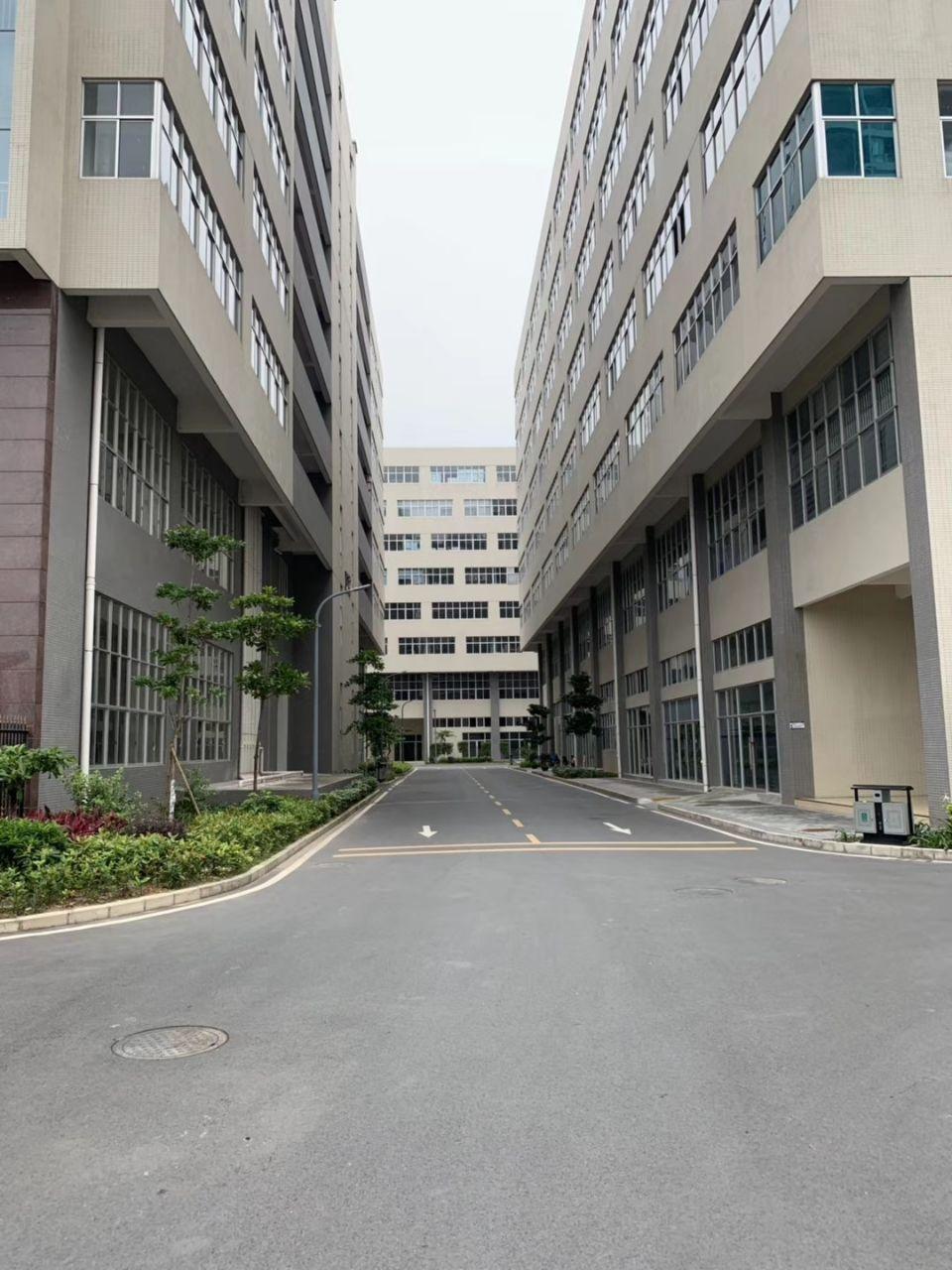东莞常平环常北路小面积红本厂房出售