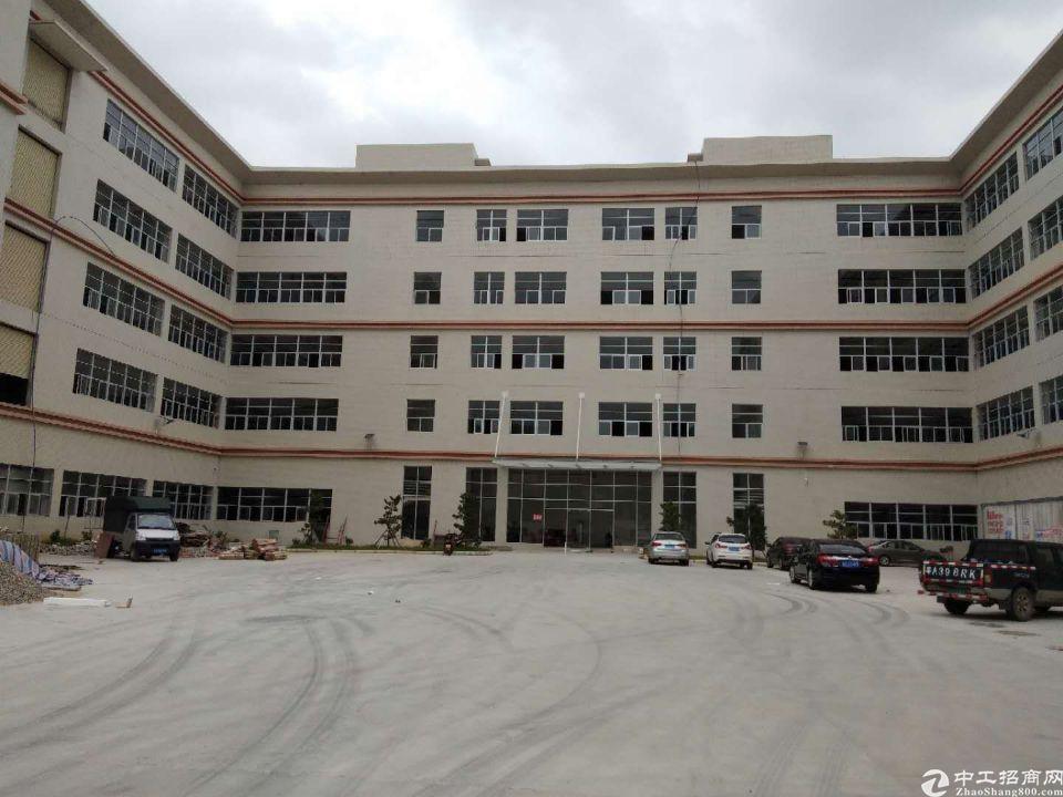 云埔工业区,一楼标准厂房2000平出租,200平起分