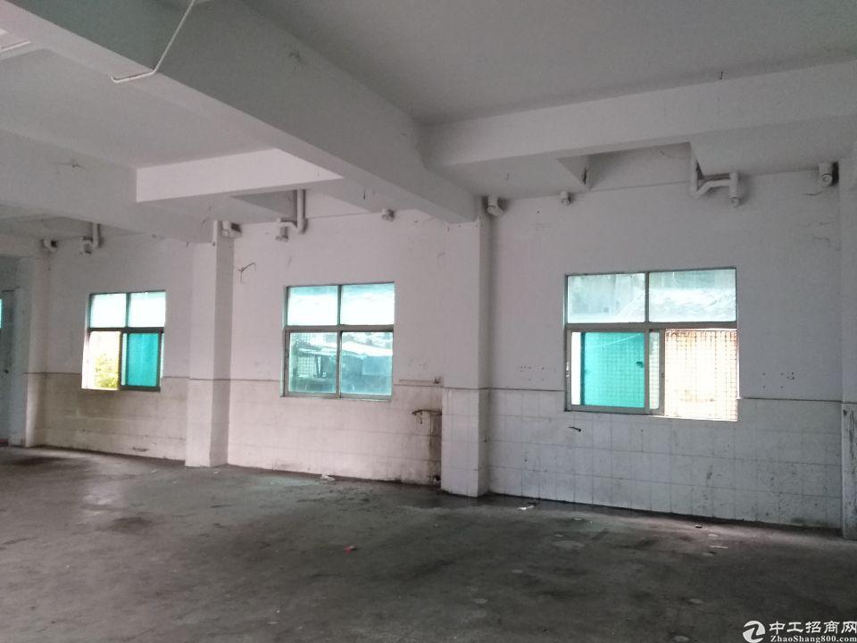 塘厦石潭埔小面积一楼适合做仓库