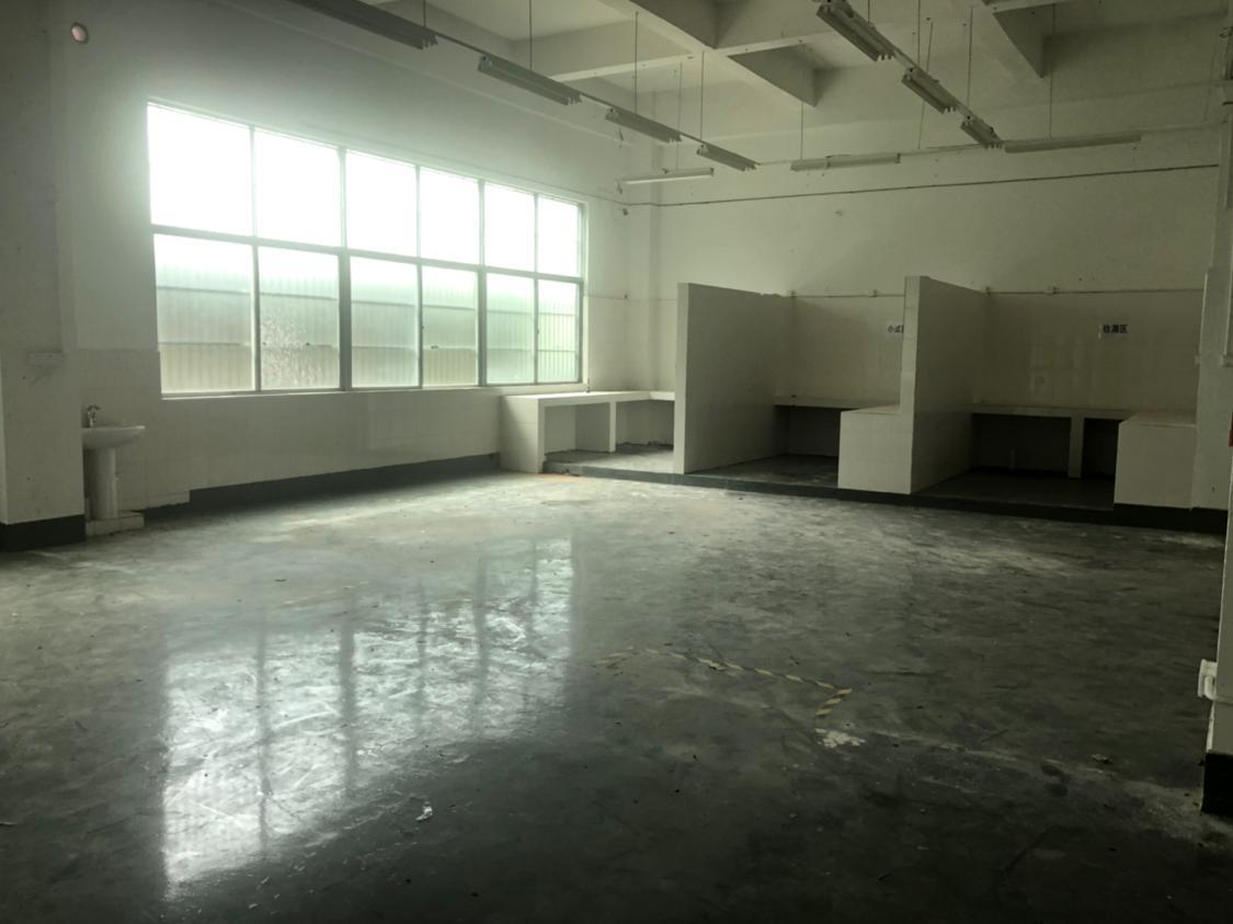 布吉一楼1100平方现成配送仓库带消防喷淋