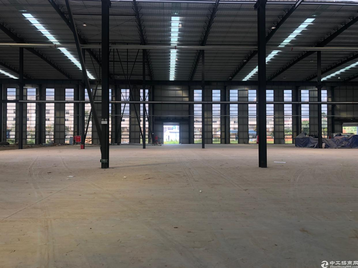 龙泉经开区全区最低价13米层高单层钢结构生产厂房可分-图3