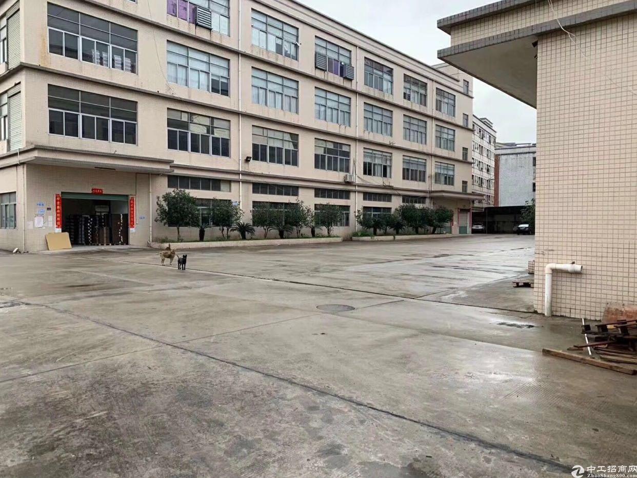 东莞石碣镇占地3000平建筑5000平厂房诚意出售