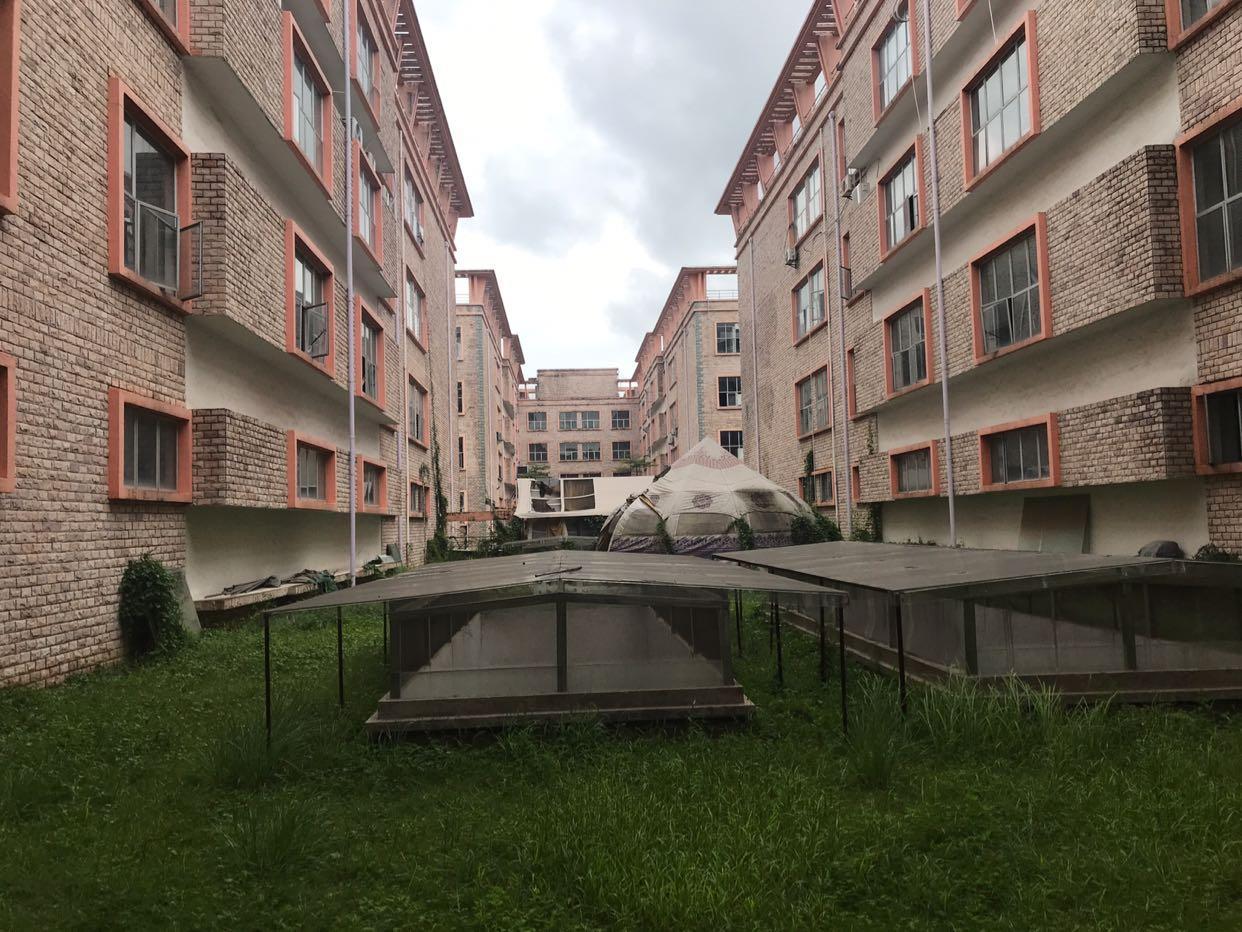 坪山坑梓4万平米花园式厂房出租1000平米起租