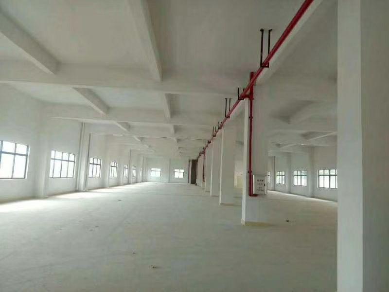 罗阳镇新出原房东标准厂房1220平带装修层高4.5米
