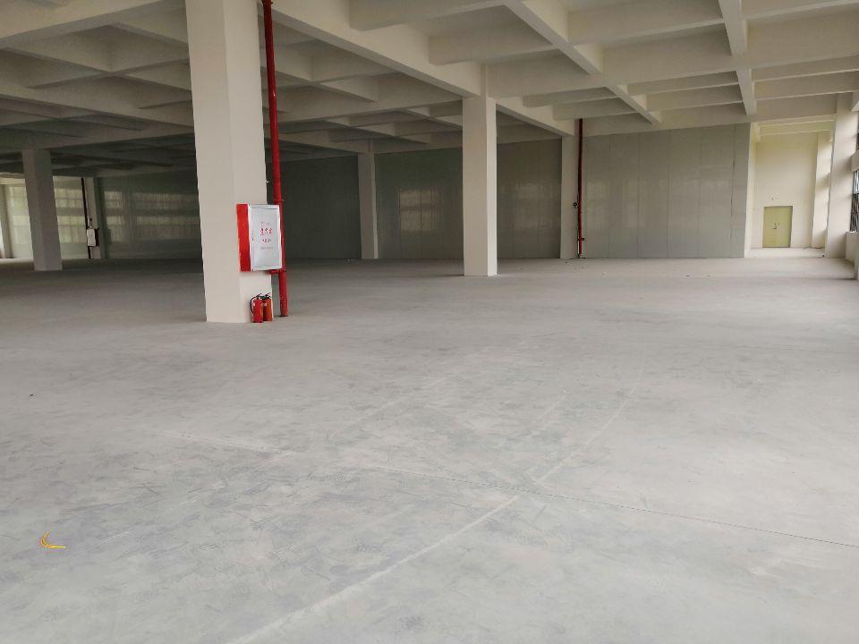 (招租)全新厂房,豪华装修,交通便利,可分租-图5