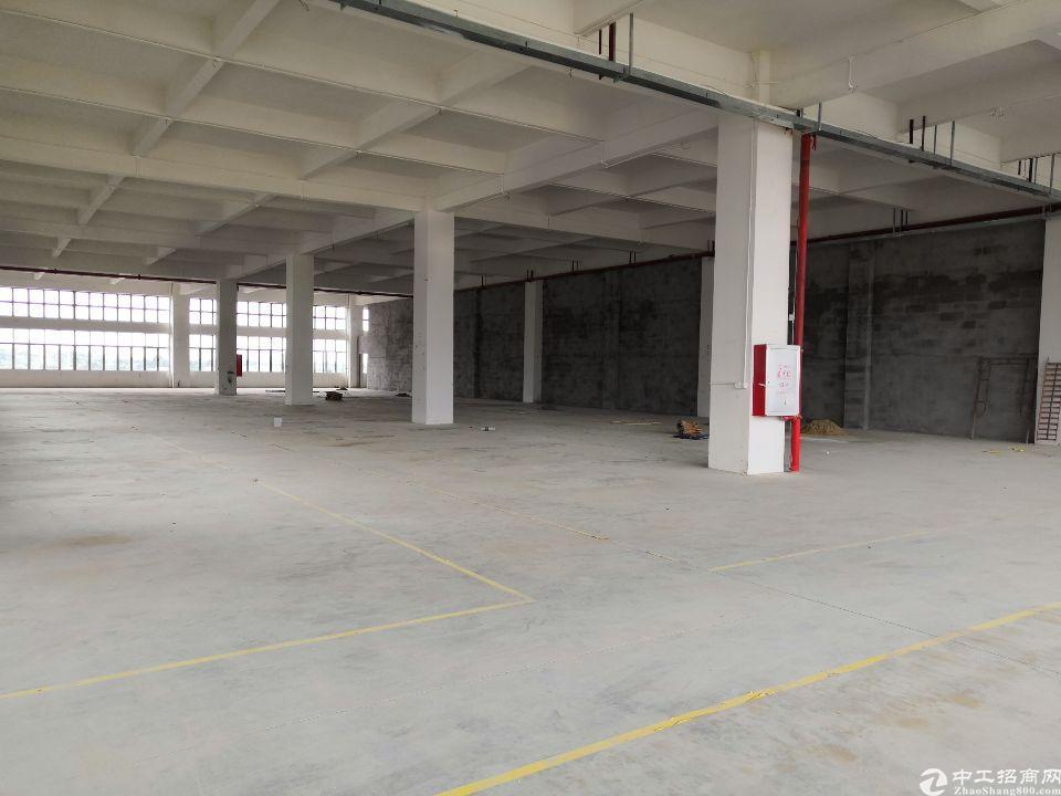 (招租)全新厂房,豪华装修,交通便利,可分租-图4