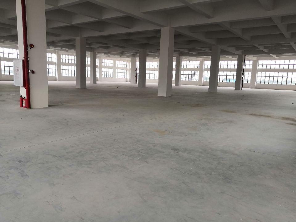 (招租)全新厂房,豪华装修,交通便利,可分租-图3