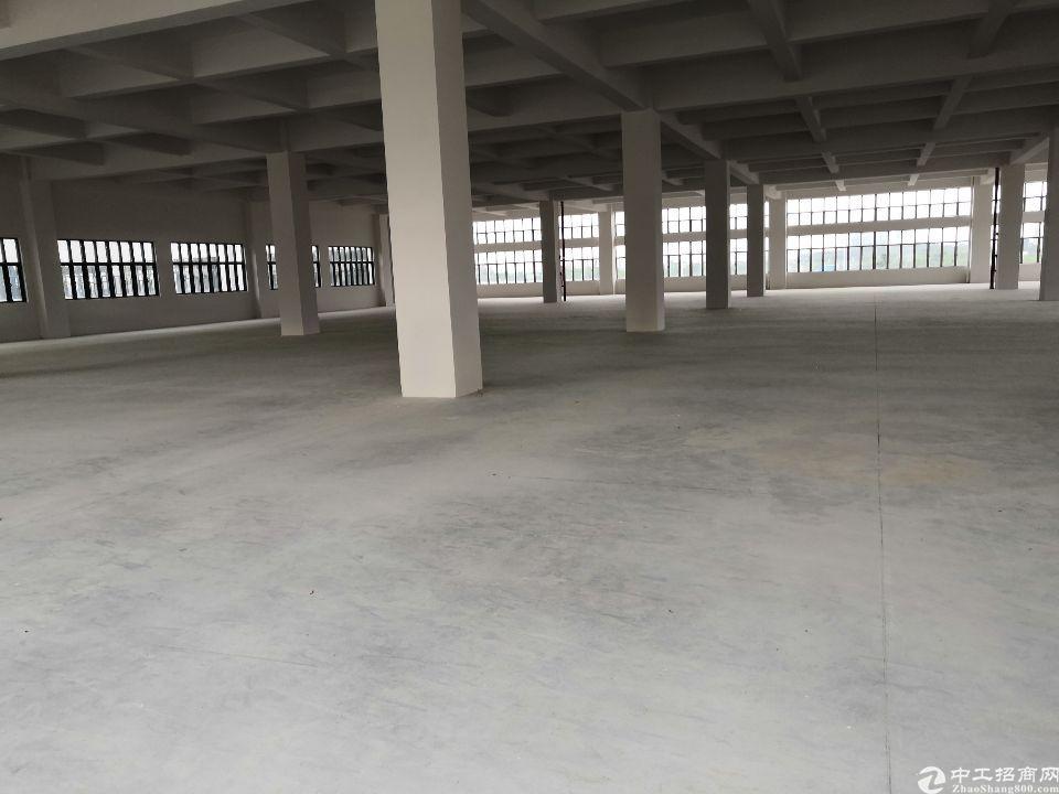 (招租)全新厂房,豪华装修,交通便利,可分租-图6