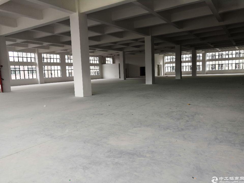 (招租)全新厂房,豪华装修,交通便利,可分租-图8