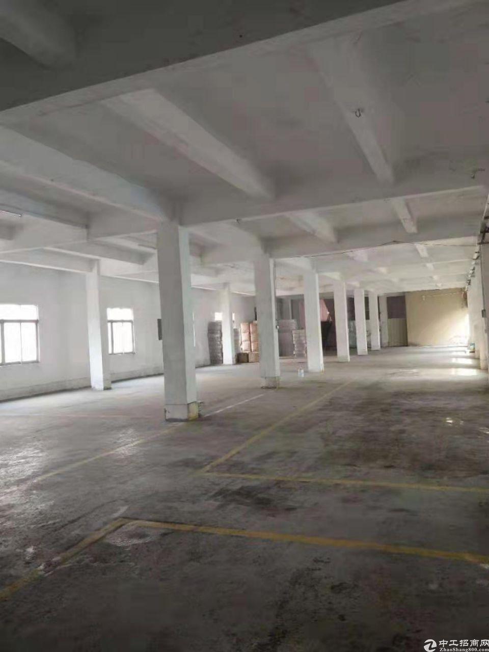 原房东一楼5米标准厂房500平方低价出租