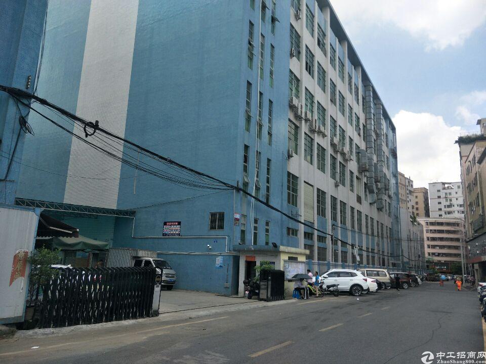 公明镇北环路上楼上一整层2500平米13元零时仓库出租