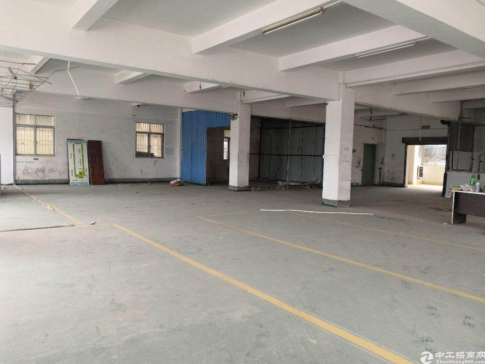 惠东县平山镇原房东1楼700平仓库出租