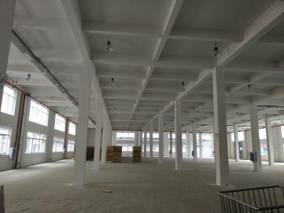 武湖厂房1200平米,可轻工仓储物流,配套齐全