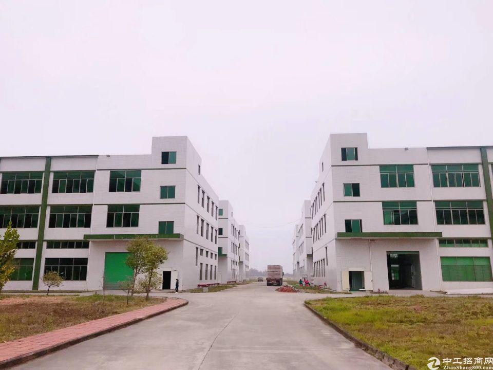 工业园区100000平大小可分租证件齐全空地超大
