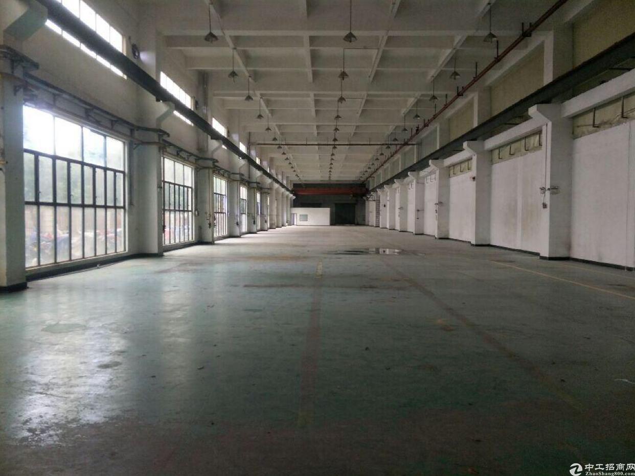 惠州园洲水电齐全,砖墙到顶厂房出租