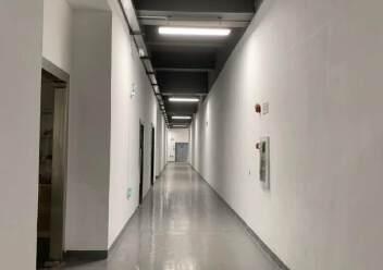 观澜福民新出楼上原房东800平方带精装修标准厂房出租!图片2