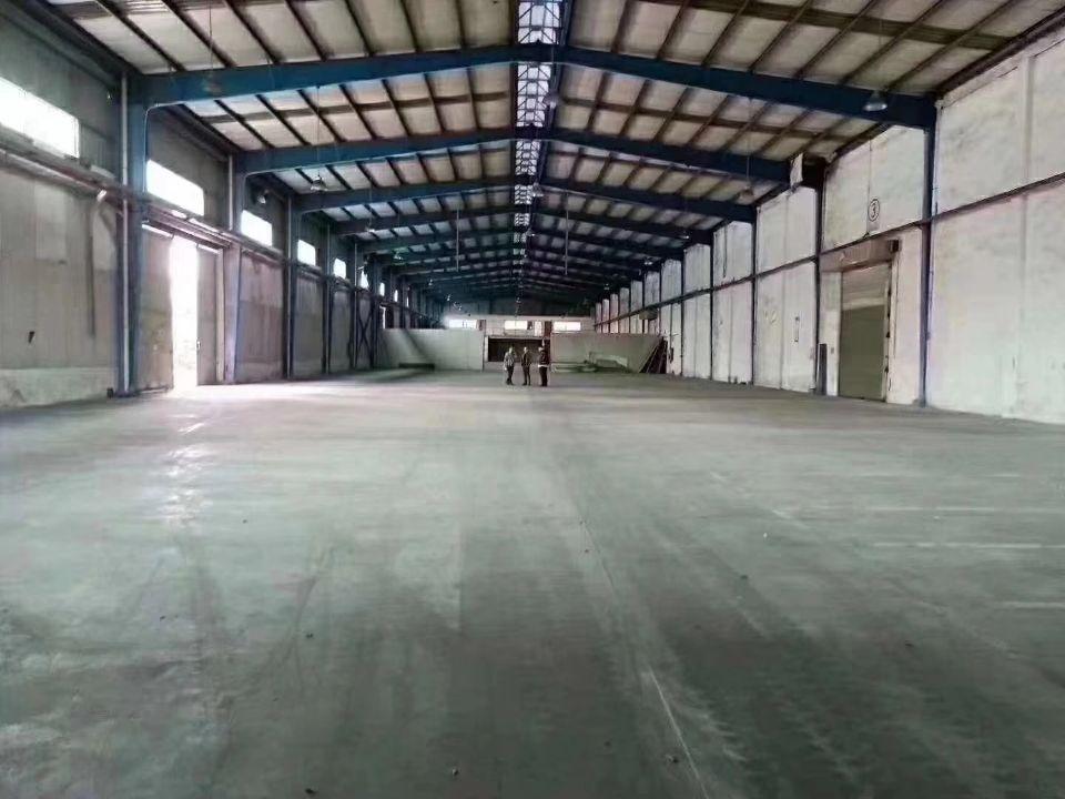 白云单一层钢构独院厂房面积3800平方滴水八米,内空一排柱子
