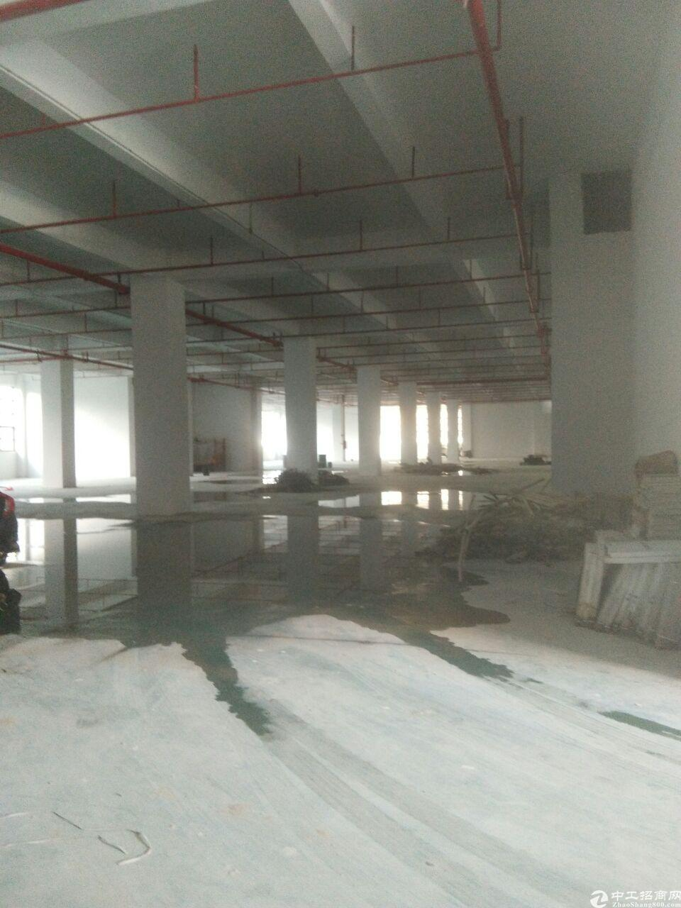 长安沙区单一层10000平方大小可分租