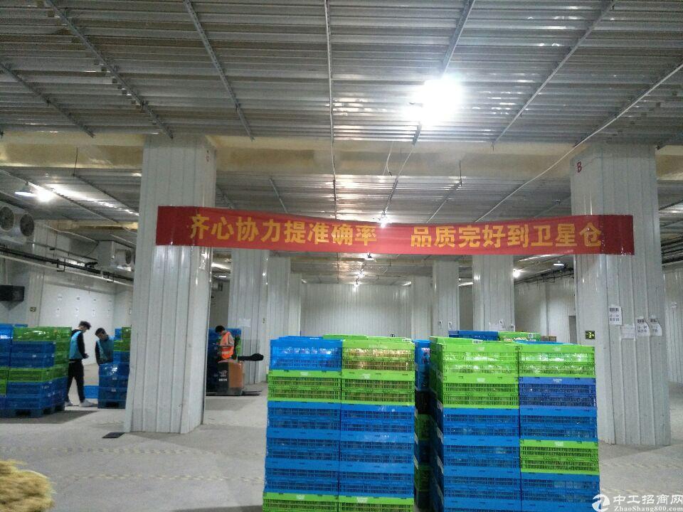 汉口北冷库5000平米可分租,冷冻冷藏恒温仓储加工均可,扩展