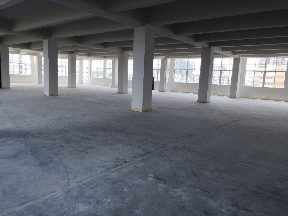 东坑镇新出(带环评证)的厂房,大小按需 求出租