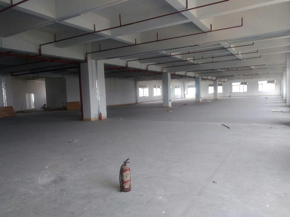 塘厦平山原房东标准厂房1楼2楼3楼面积3600平方