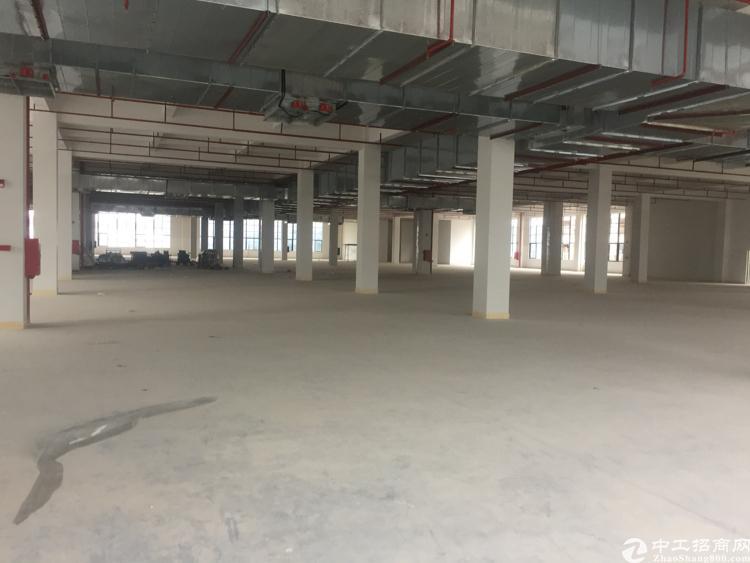 惠州仲恺高新区单层面积5000平出租