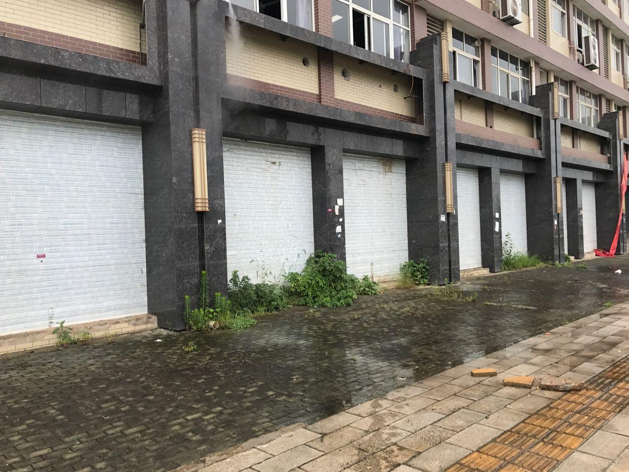 黄陂临空东路3000平一楼门面出租-图2