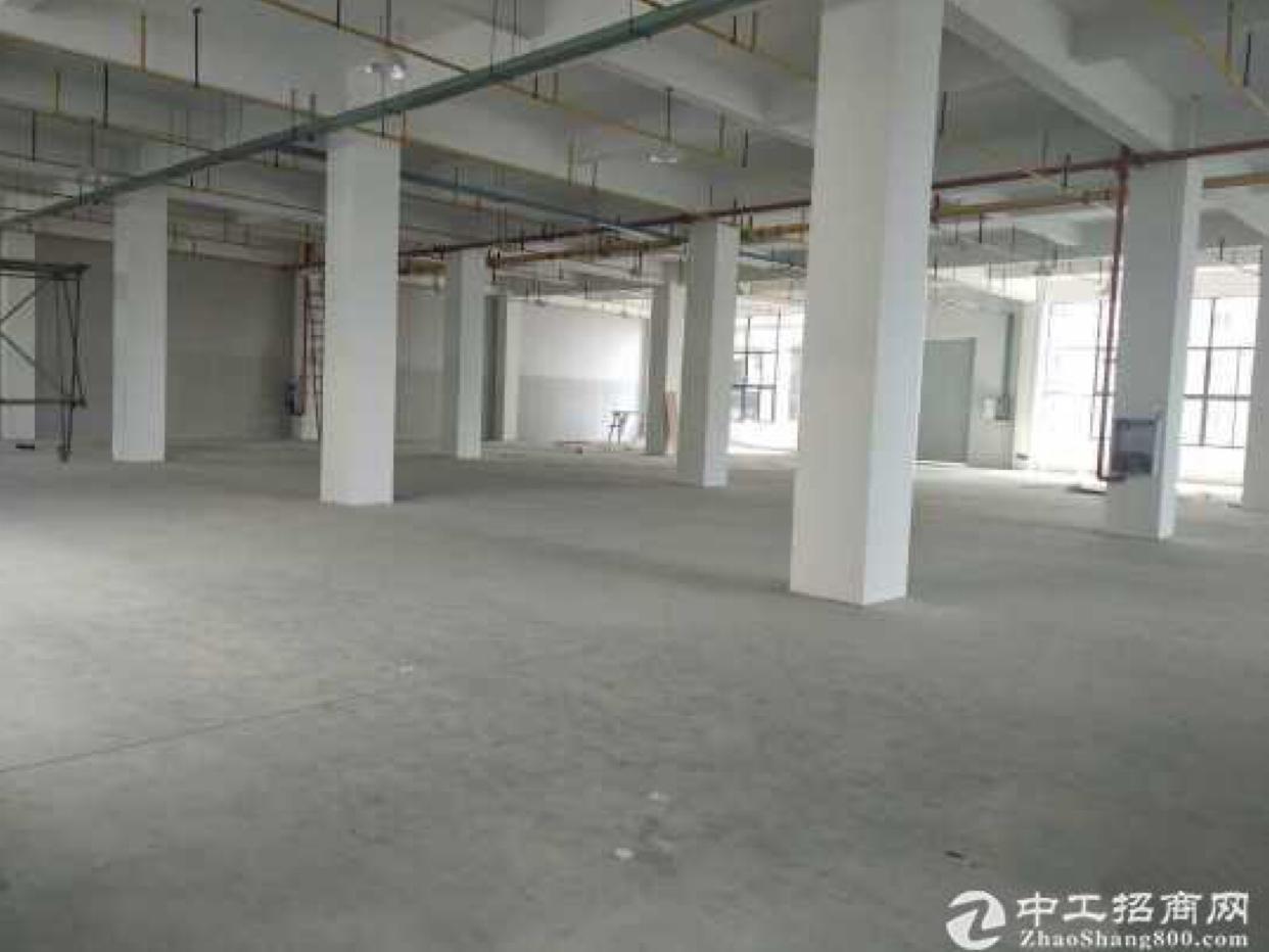 黄陂临空港经济开发区 独栋厂房层高6米 可分割出租