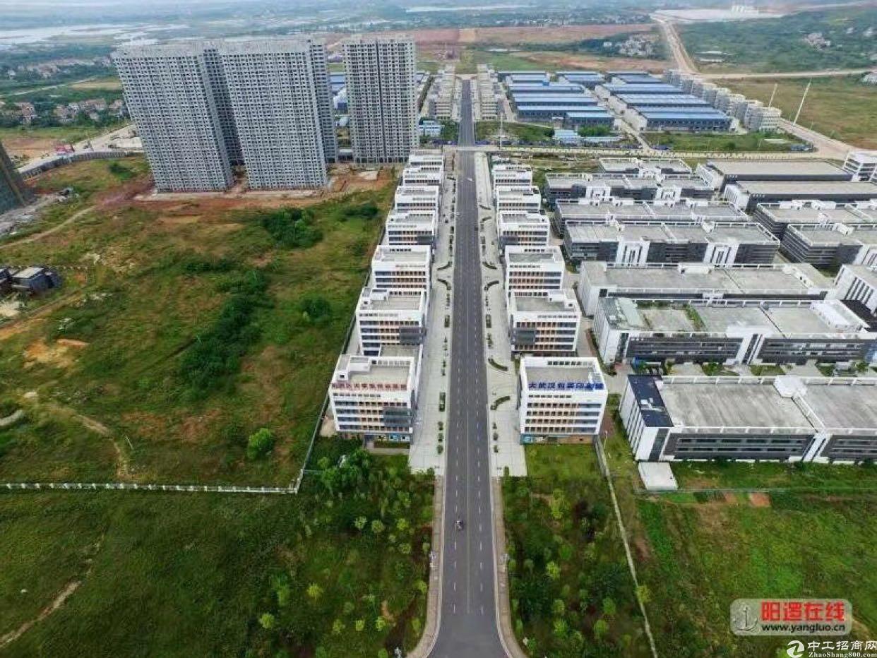 阳逻港长江新城区域综合厂房