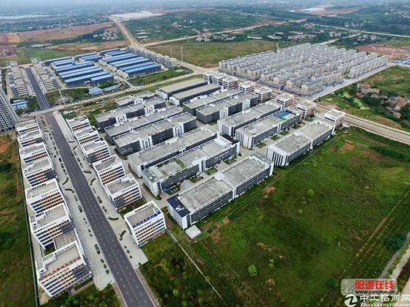 新洲阳逻千亩级产业园招商,高速路口,地铁口
