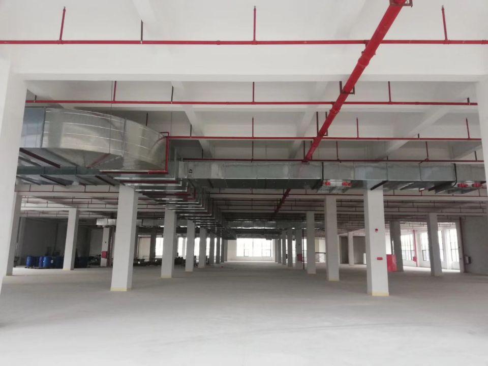 惠城区陈江标准单层面积5300平方,内部情况看图,-图2