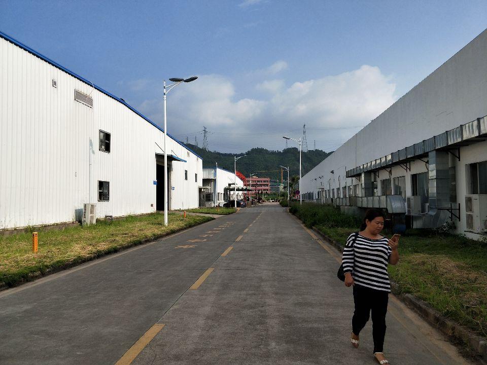 观澜观光路梅观高速出口新出原房东独院钢构厂房30000平米-图3