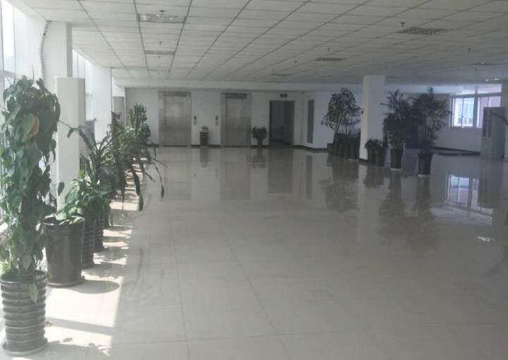 龙泉经开区500平精装修办公室,拎包入住图片5