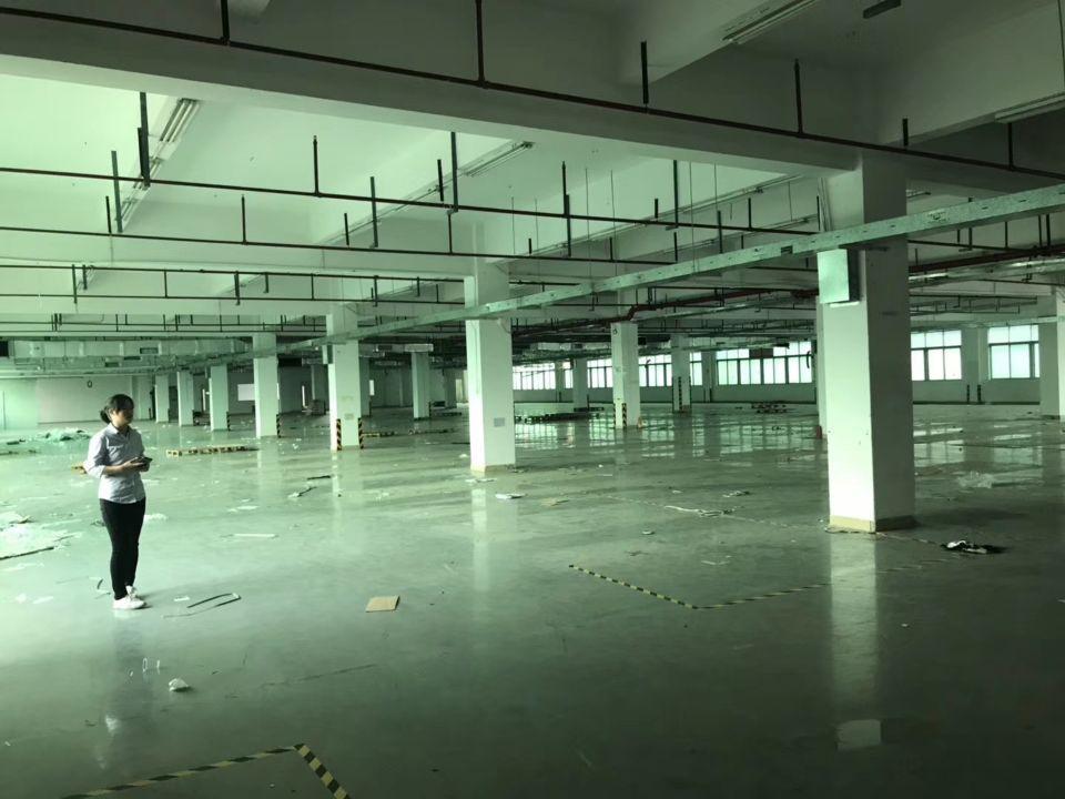 虎门镇原房东现成印刷环评厂房出租3600平方-图3