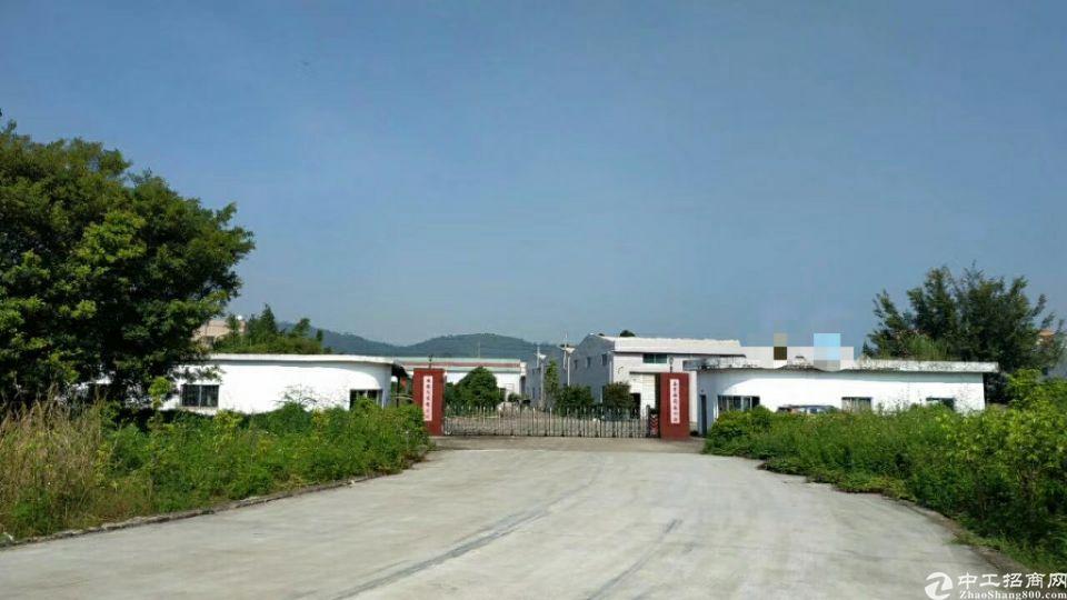 龙华镇新出独门独院钢构厂房4100平